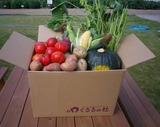 0907収穫祭