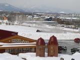 融雪剤市民農園