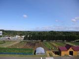 0923体験農場