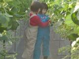 いちご収穫2