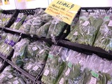 1229葉物野菜