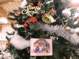 2012クリスマス13