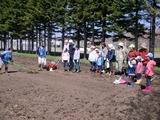 小麦の学校2