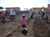 小麦の学校3(施肥後)