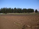 1108体験農場2