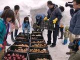 0317雪中野菜7