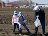 小麦の学校肥料まき