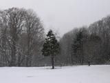1121雪1