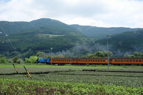 DSC01652