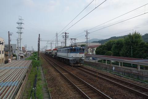 DSC01474