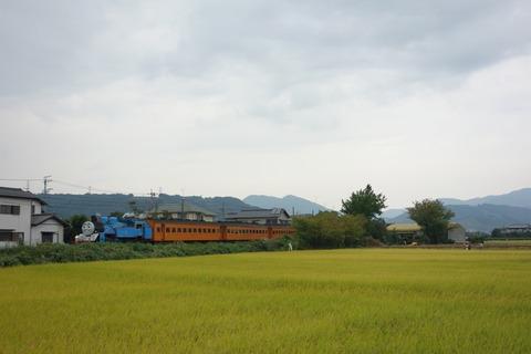 DSC07446