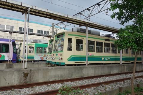 DSC03929