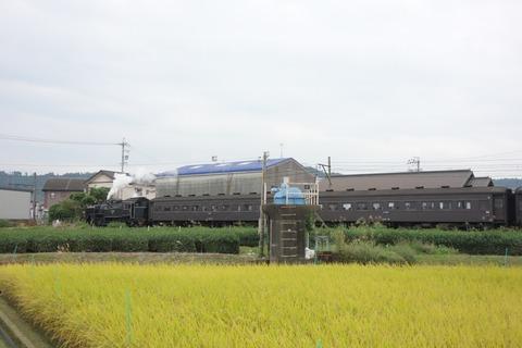 DSC07475