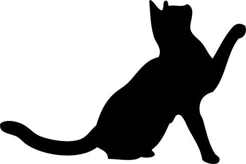 【猫画像】家に来たばかりの仔ネッコさん、ワイのクッションを占領する