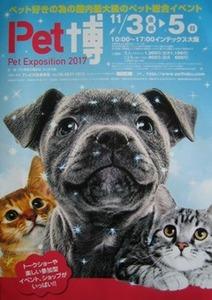 Pet博2017大阪のチラシ