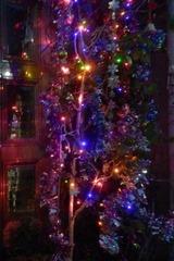 お家のクリスマスイルミネーション