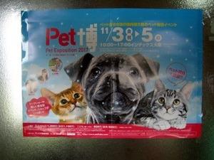 Pet博2017大阪のポスター