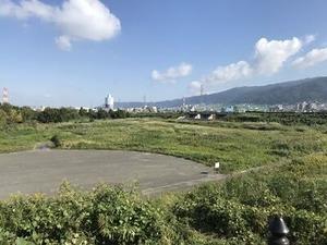 工場近くの遊水緑地の写真