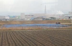 金魚の養殖池