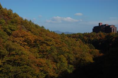 谷沢川にかかる谷川橋からの紅葉の眺め