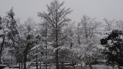 草津温泉街の雪景色