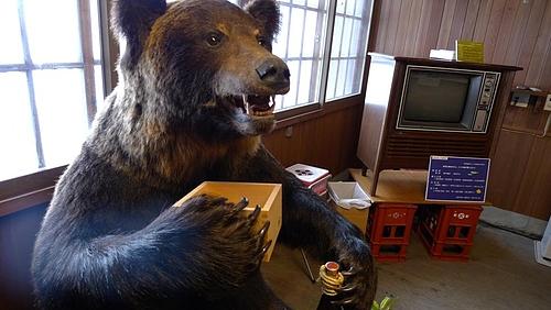 のんべえなクマ