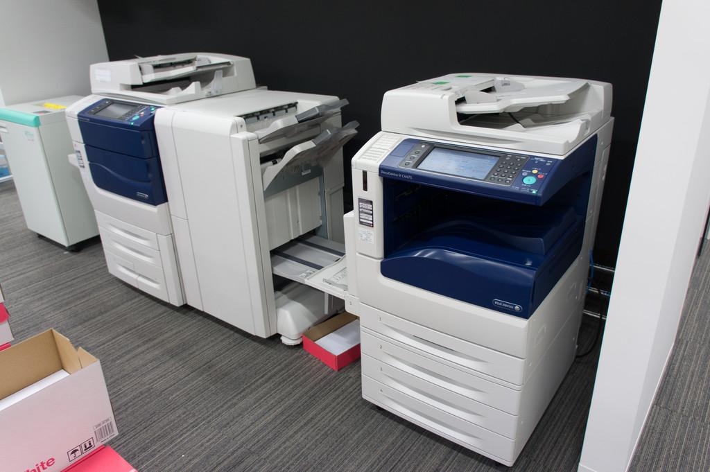 DSC0203