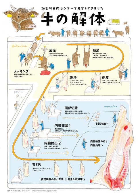 usi_kaitai_jp_v01[1]