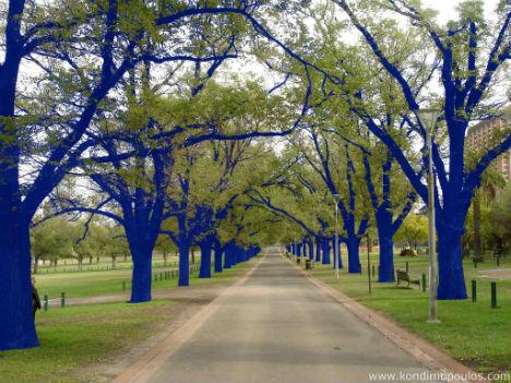 blue-trees-3