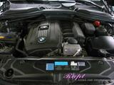BMW 525 エンジンオイル交換
