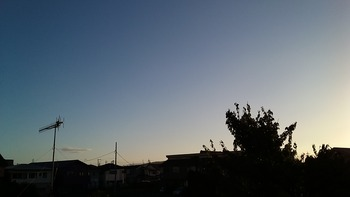 fb9c8a84.jpg