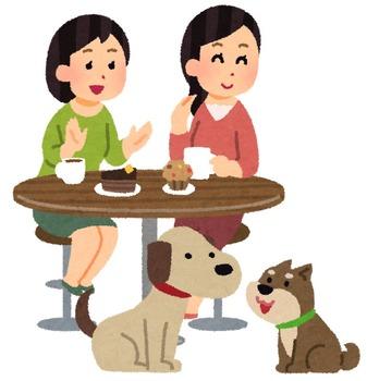 pet_dog_cafe