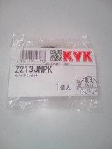 Z213JNPK