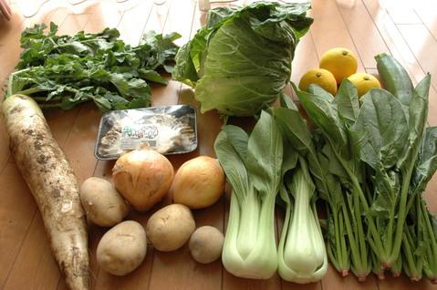大地宅配 お試し野菜セットが届きました。