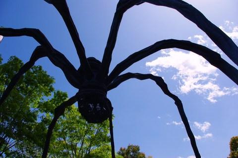 蜘蛛のオブジェ