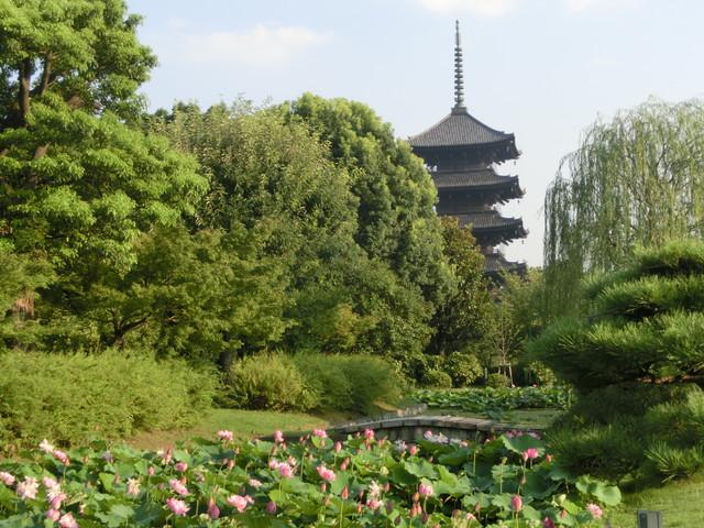 2013年 8月 京都 356