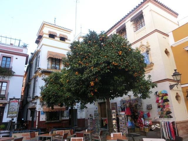 2013 12月スペイン旅行 688