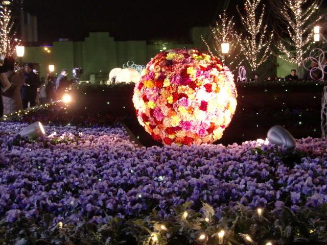 2010 クリスマス 082