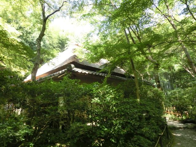 2013年 8月 京都 262