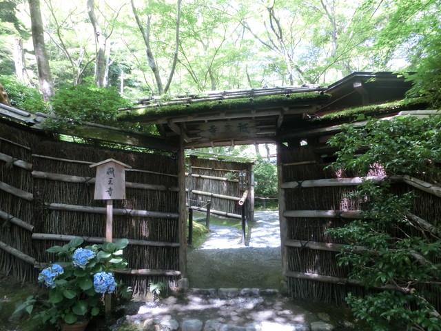 2013年 8月 京都 255