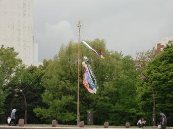 2012年 5 018