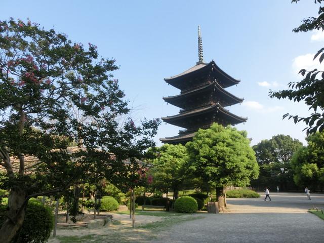 2013年 8月 京都 350