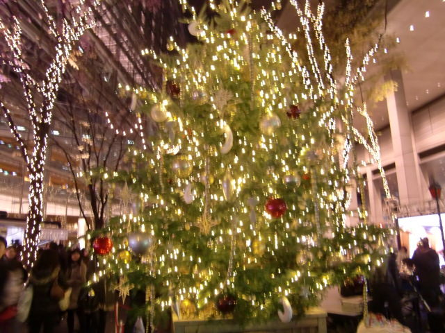 2010 クリスマス ディズニーシー 062