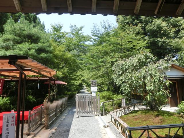 2013年 8月 京都 265