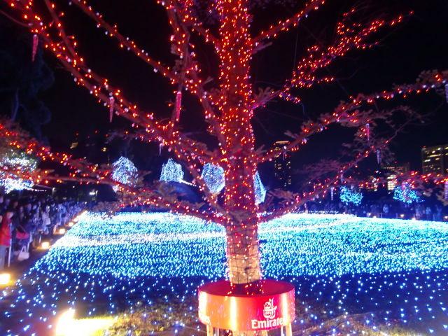 2010 クリスマス ディズニーシー 081