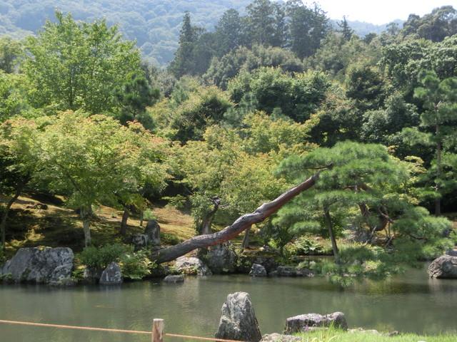 2013年 8月 京都 308
