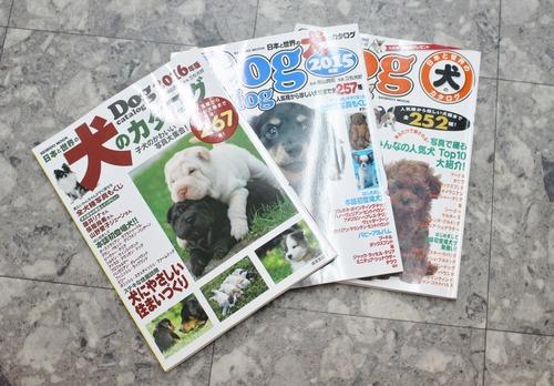 犬のカタログ2016