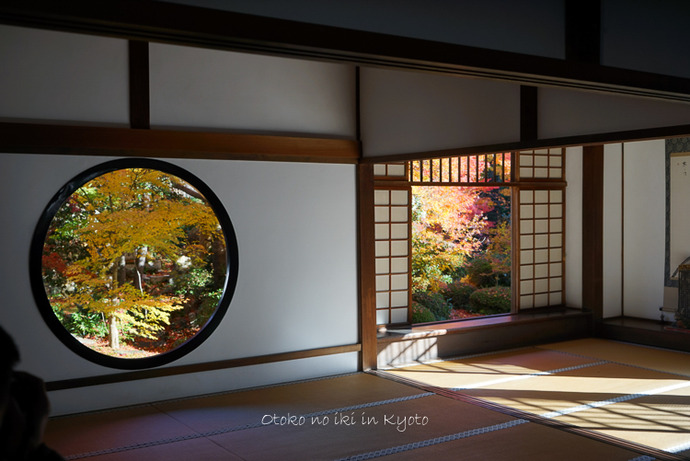 1124京都11月-1