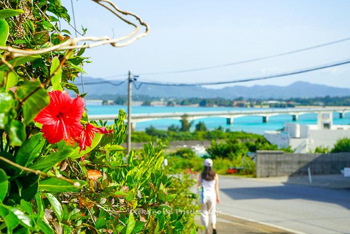 沖縄2021GW-058