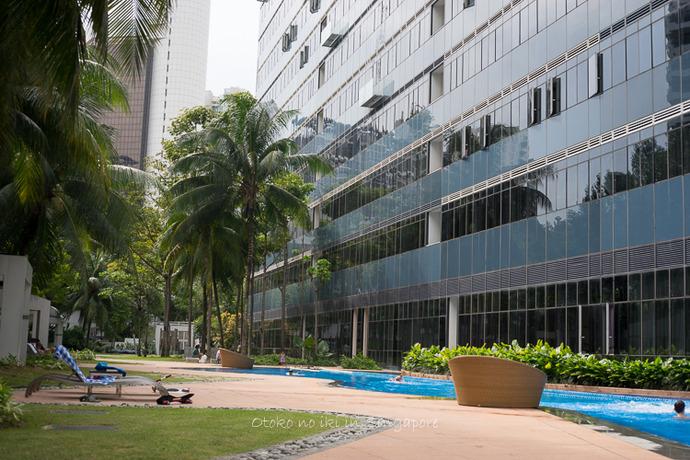 シンガポール20142014-19